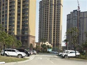 新城区套房出租,整年出租,年租1.1万