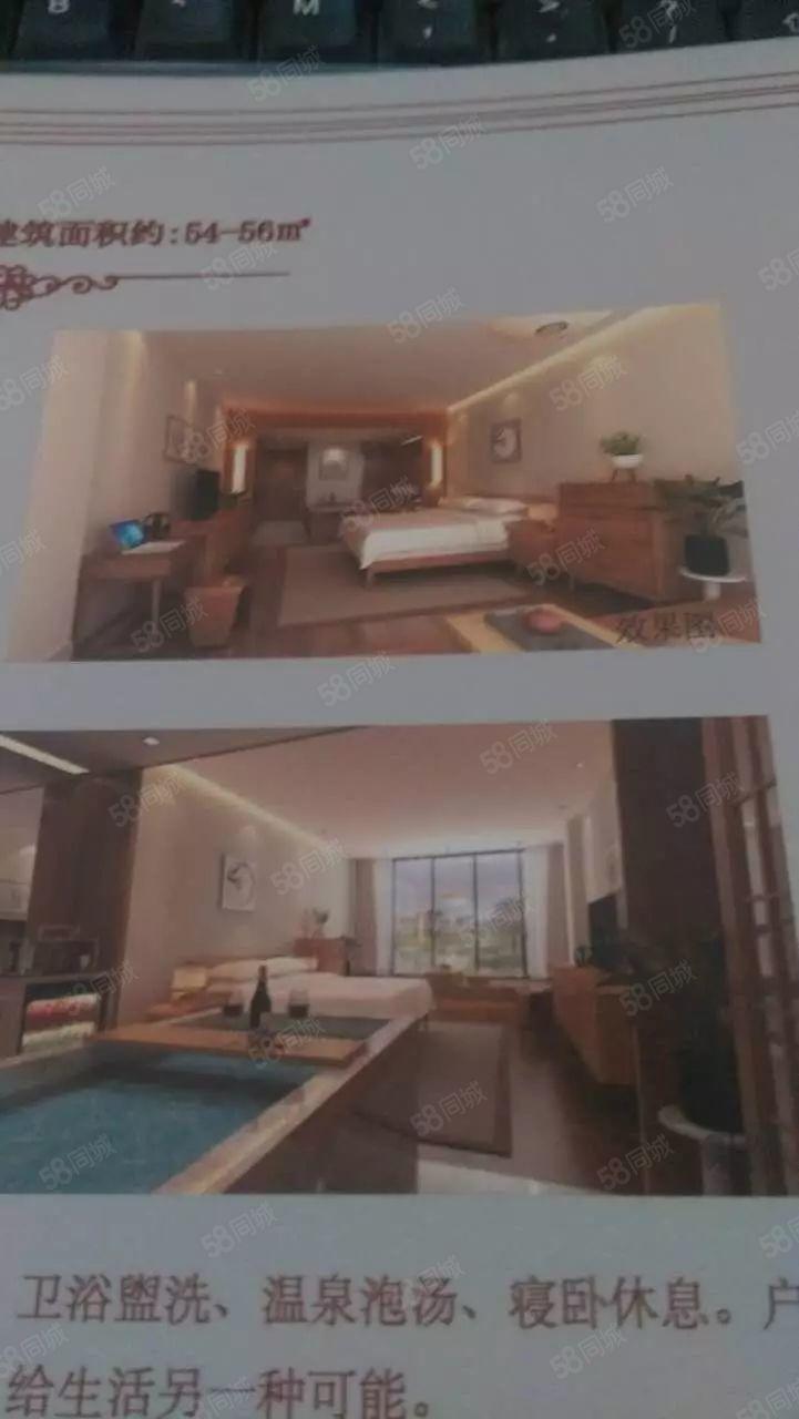 卢舍温泉式酒店公寓,投资者选择,十年返租!详情电话联系