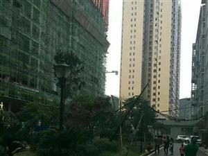 玉景小区住房二楼,电梯步梯两用房,豪华新装,可按揭分期