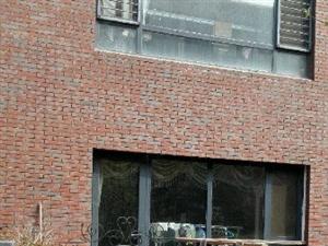 南池公馆一楼复式前后三个庭院送两个车库毛坯新房