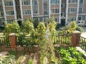 富江苑一楼带花园,地热天然气,精装修拎包入住