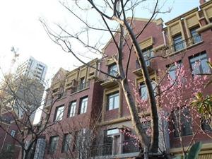辰华12楼复式边户带院子可贷款手续简单直接更名
