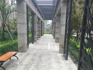 南风花园二期碧桂园中央公园火热认筹中月底开盘欢迎咨询