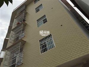 和谐家园北院墙边民宅2室1厅1卫