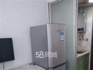 城区将军街旁滨江路电梯公寓一室1室1厅1卫