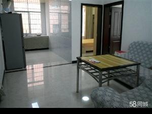 豪华公寓河东百业街电力花园对面2室1厅2卫