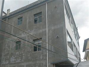 九龙社区9室8厅6卫
