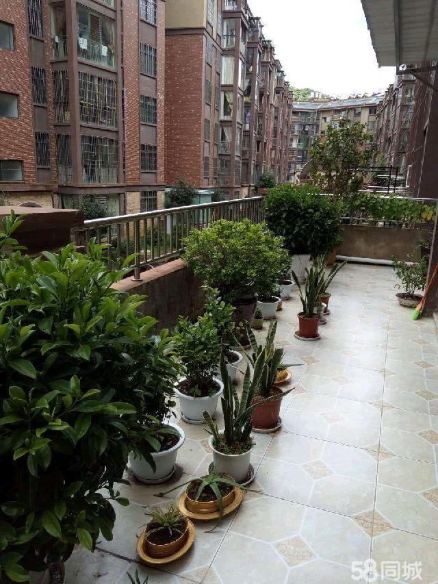澳门拉斯维加斯赌场绿景豪庭2室2厅1卫双阳台