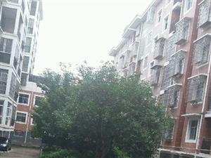 S急售新房和谐温馨家园2室1厅1卫