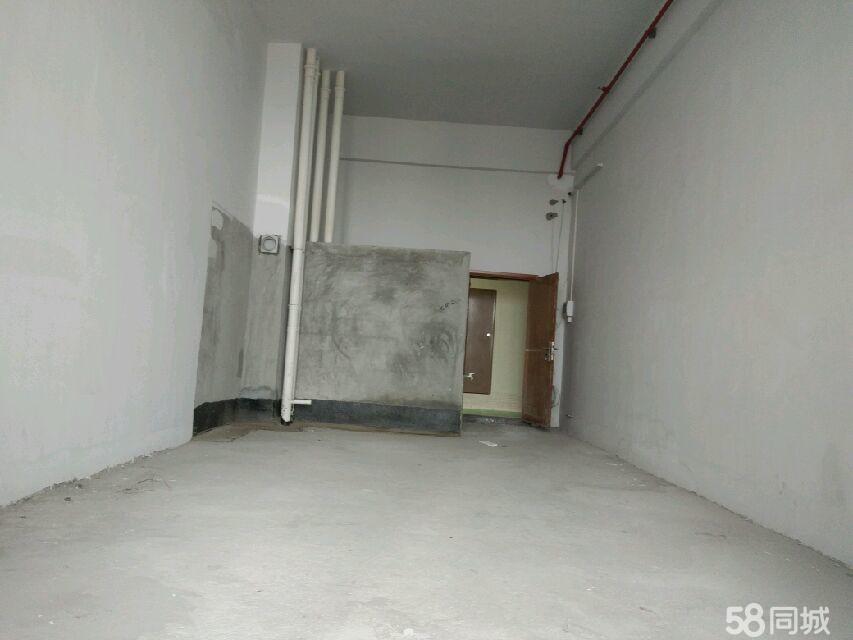 世博广场1室1厅1卫