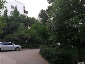 飞山新城4室2厅2卫楼梯房出售