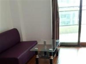 个人免费自租:莘园小区(蓝田周边)月付拎包入住的单身公寓