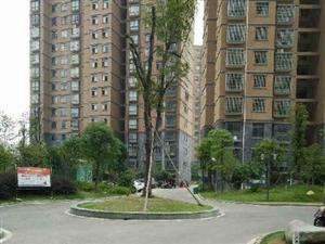 临川城市经典3室2厅136平米简单装修押一付三