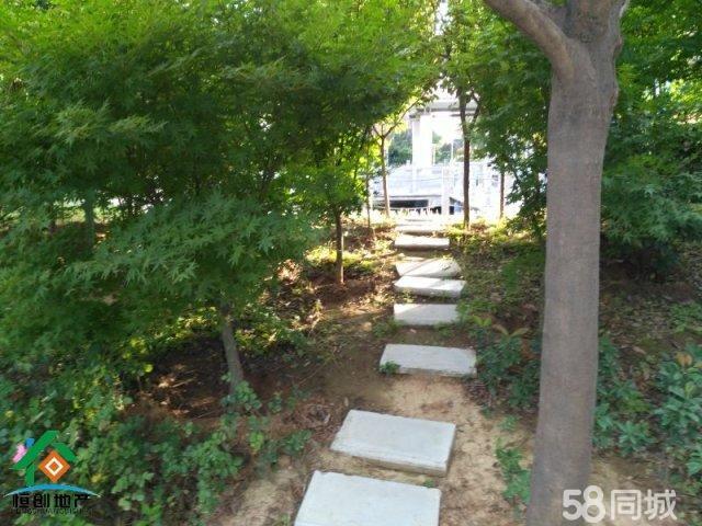 汝阳汝阳花园小区6室2厅3卫320�O