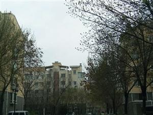 东营区东城沙营3期7楼3室2厅120平米简单装修年付