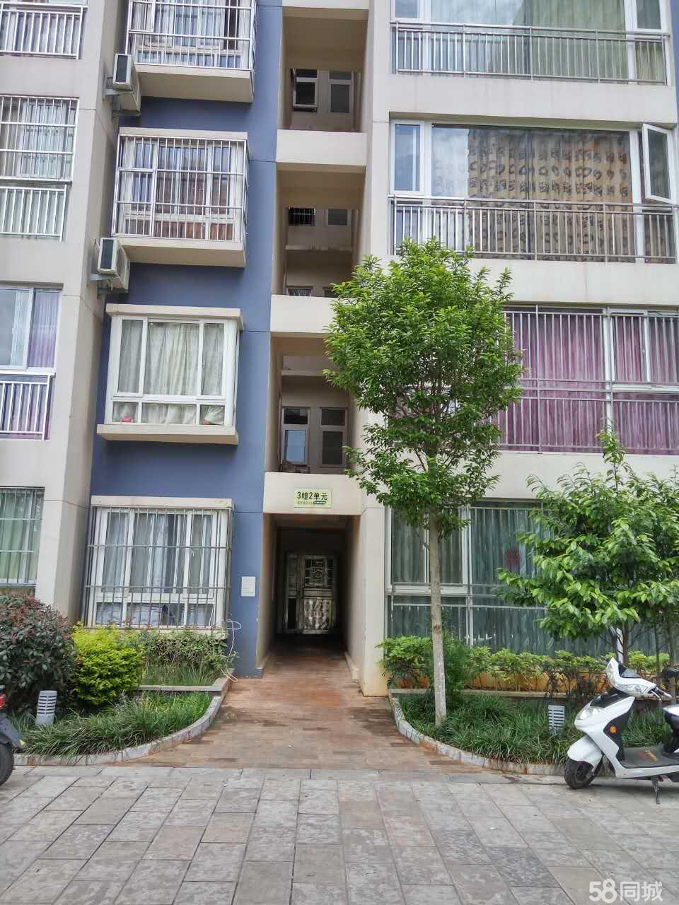 红塔盛世庭园2室2厅1卫79平米