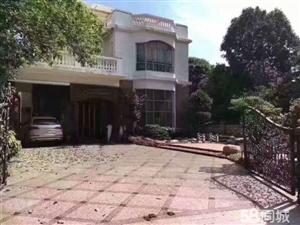 碧桂园蓝天半岛独立别墅豪装花园400㎡建筑580㎡