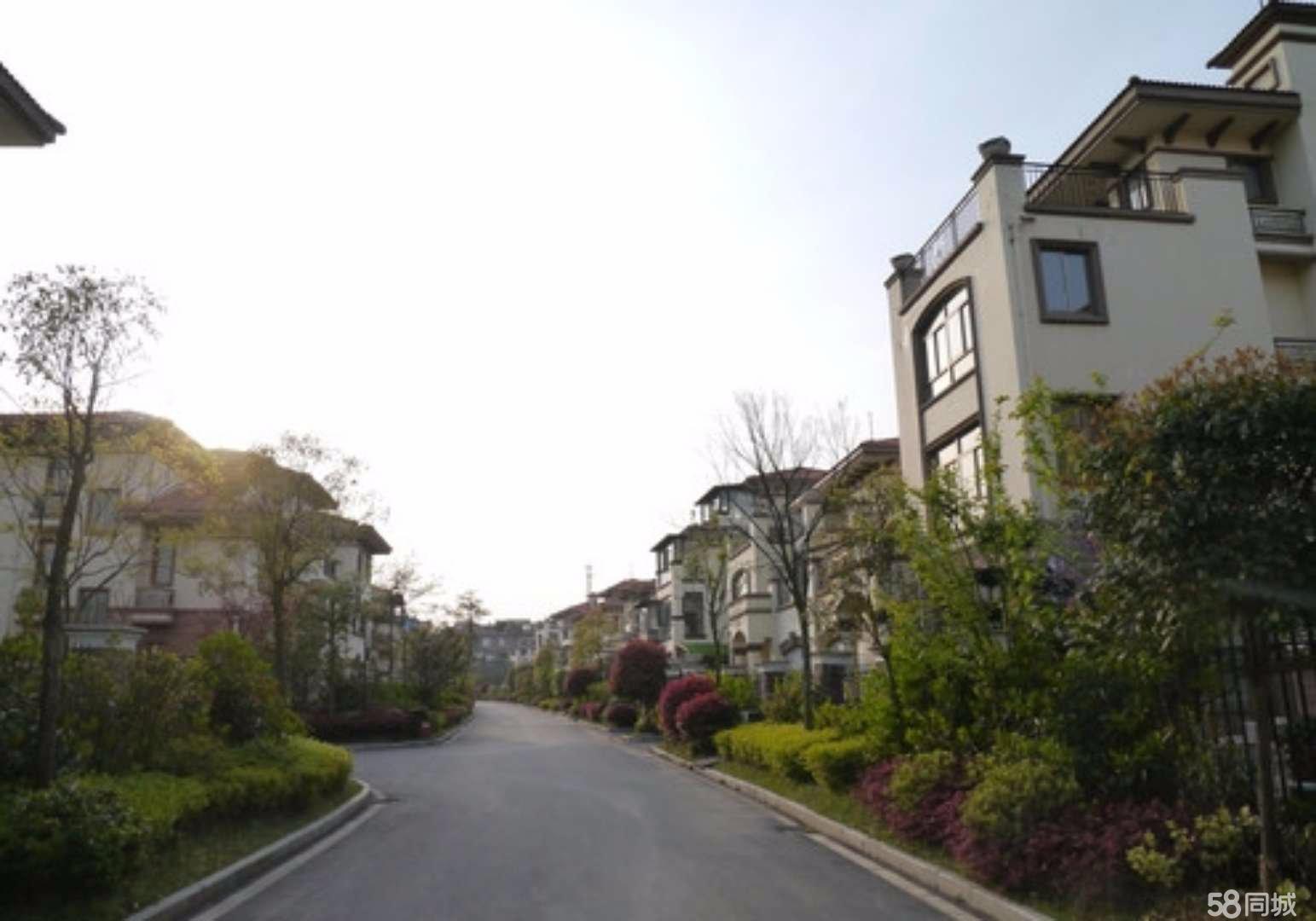 安源景盛豪庭9室3�d6�l700平米
