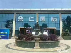 鼎仁国际商贸现铺火热抢购仅需5万起