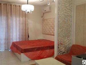 铂金瀚1室2厅1卫45.19平米
