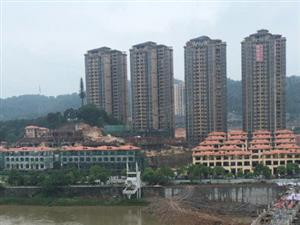 中山西路秀江河畔星河城单身公寓42平米碧桂园