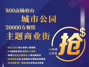 新城《杨府山江南里》首付40万起30至60平商业综合体稳赚