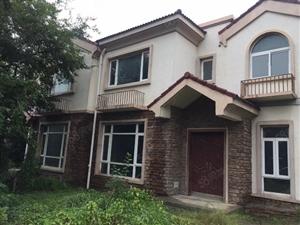 碧桂园1期双拼别墅出租。月租1万。