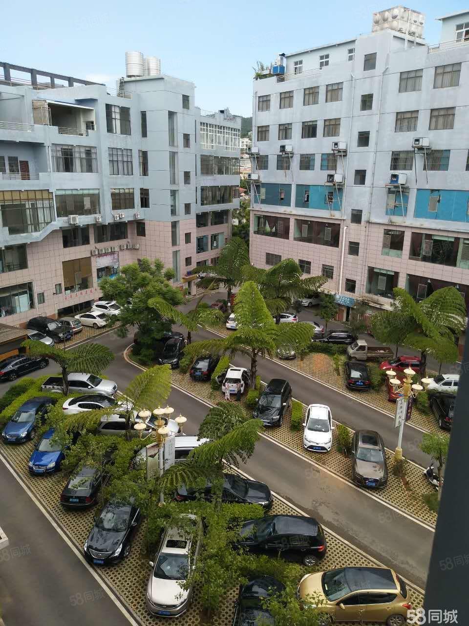 嘉阳商业城单身公寓带电梯停车免费附近的上班族速度下手了!