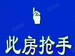 世锦花园电梯房全新毛坯137平方采光无敌仅售74.8万