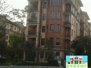 南湖旁南湖雅苑多层5+6洋房出售新房未住