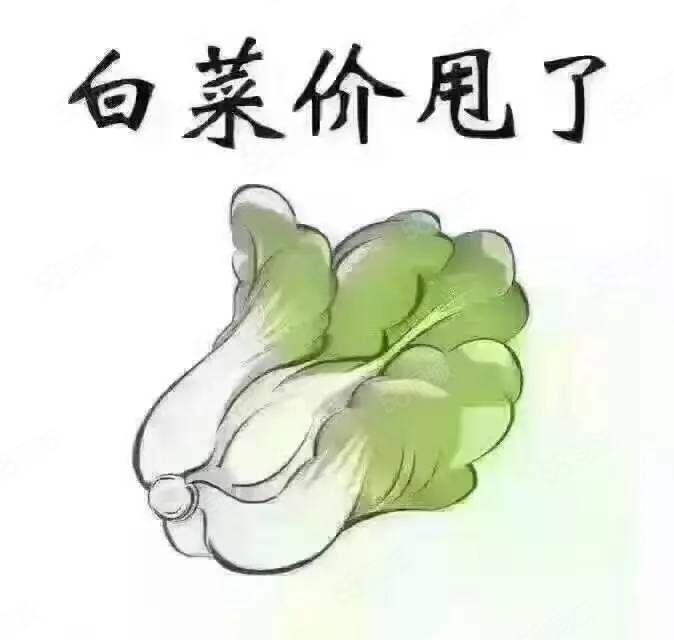 嘉禾御景园毛坯房白菜价,快下手吧