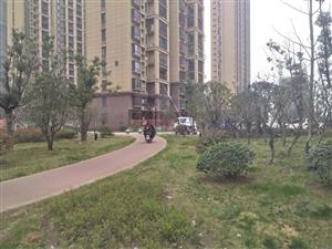 蓝居酒店附近天香华庭套房出租,精装修可拎包入住,年租1.4万