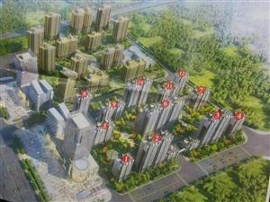 阳光新城9楼,3室2厅,客卧向阳,包改名