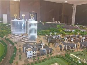 旅游地产公寓投资,包租托管给五星级酒店房源有限