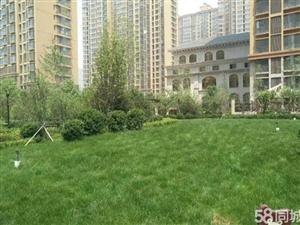 《润家房产》中山绿洲、赠仓房、全款、楼层好户型方正
