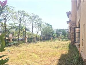 龙熙山独栋,501方花园,386方建筑面积,仅仅售330万