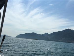 白莲湖旁、阳光充足、交通便利、业主诚意出售