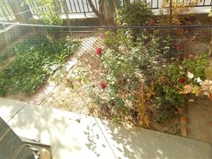 金安居1楼带三十几平米小花园种菜种花都可以