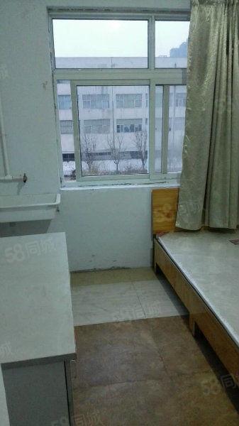 银屏路冬青街青年公寓单间标间