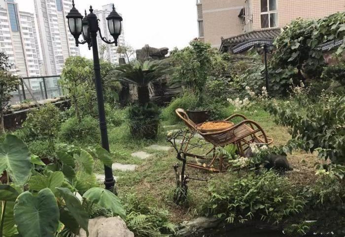 城西灏景尊城旁带300平米花园此价带车位小高层大四室