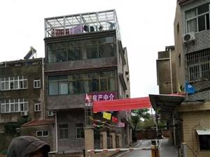 葛店东谷中鑫城葛店高中对面附近百姓购物广场
