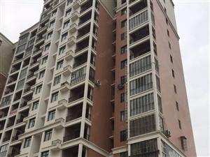 领秀1+8后面,金港花园,电梯房出售,,,,,,,,,,,,