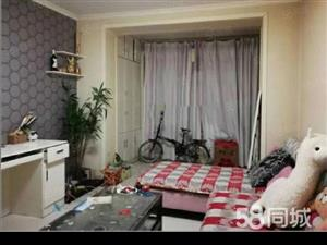 阿勒泰路BRT车站旁汇芙园小区精装单身公寓急售,送家具家电