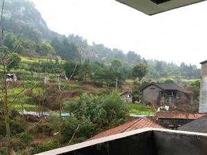 三所名校旁背靠青山前有绿水视野开阔免费看房