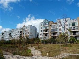 楚风苑4房只要36.8万!单价2530每平米!房子两证齐全!