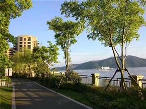 绿城蔚蓝公寓精装海景房新房无税团购仅剩3个名额