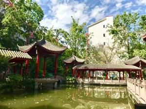 郫县杜鹃城新房源多层花园洋房环境很好的高端住宅