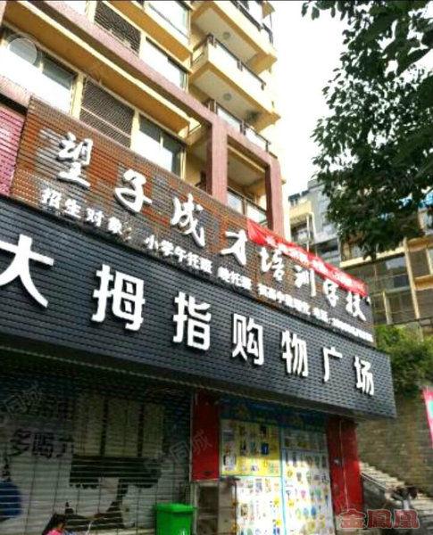 金凤凰罗林火车站写字楼出租