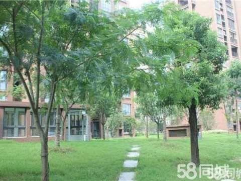 皖公花园附近厂区宿舍楼,总五层,三楼三室二厅,135平方米。
