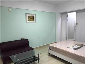 万达周边,江滨花园多套新修单身公寓出租(个人,可月付)